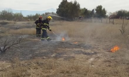 Incendio de Pastizales en Huincul