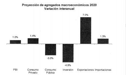 Estimaciones y proyecciones Macroeconomicas en Neuquen para el 2020